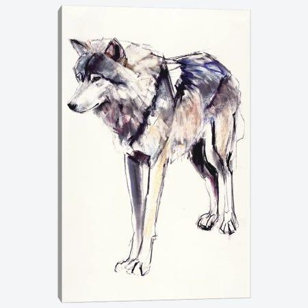 Alpha Canvas Print #MAD1} by Mark Adlington Canvas Print