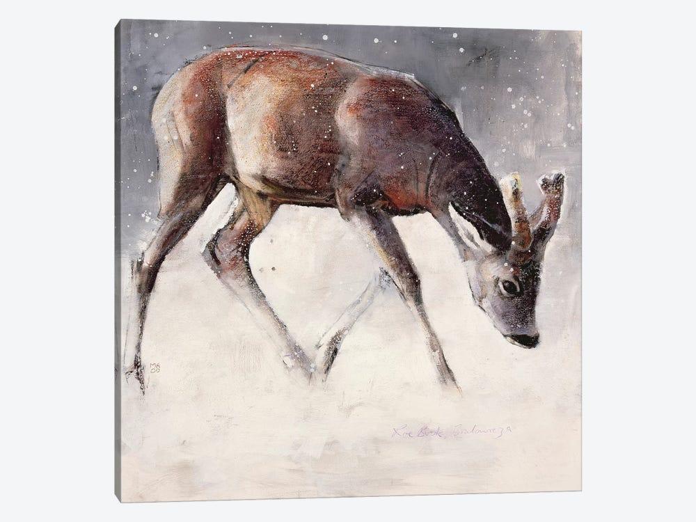 Roe Buck by Mark Adlington 1-piece Canvas Artwork