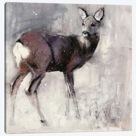 Roe Doe Canvas Print #MAD21} by Mark Adlington Art Print