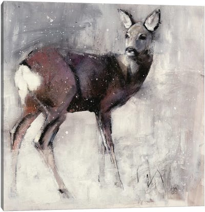 Roe Doe Canvas Art Print