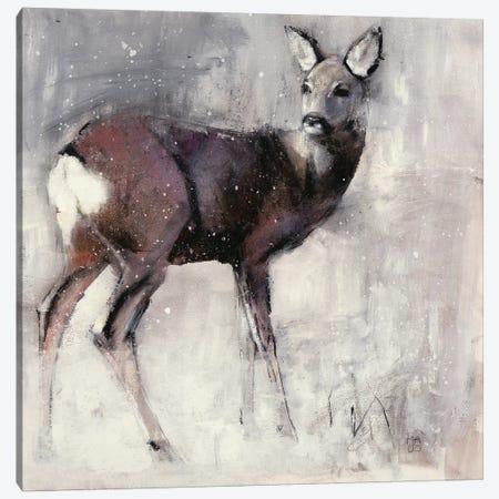 Roe Doe Canvas Print #MAD21} by Mark Adlington Art Print