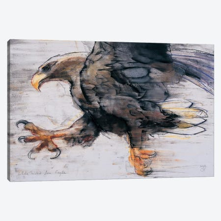 Talons Canvas Print #MAD26} by Mark Adlington Canvas Wall Art