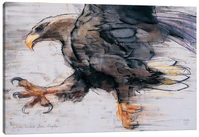 Talons Canvas Art Print