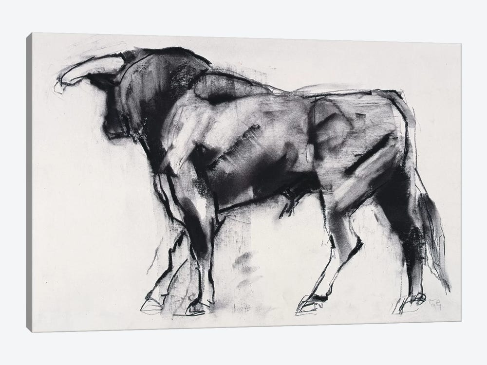Toro Azul, Study by Mark Adlington 1-piece Canvas Art Print