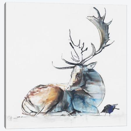Buck And Bird Canvas Print #MAD2} by Mark Adlington Canvas Print
