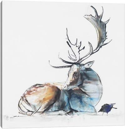 Buck And Bird, 2006 Canvas Art Print