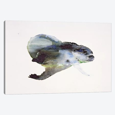 Underwater Canvas Print #MAD32} by Mark Adlington Canvas Artwork