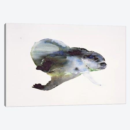 Underwater Canvas Print #MAD32} by Mark Adlington Canvas Artwork