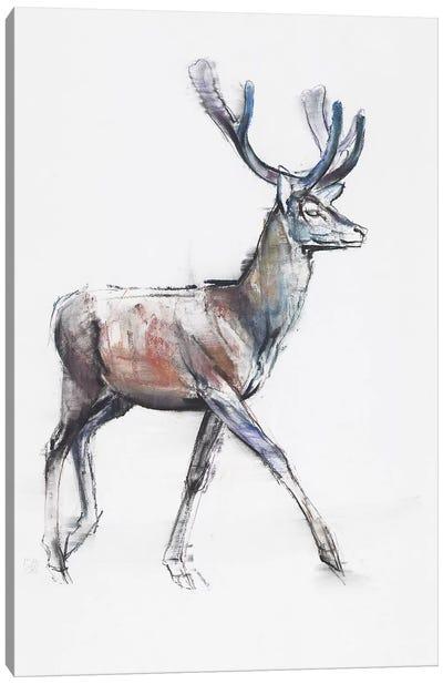 Velvet, 2006 Canvas Art Print