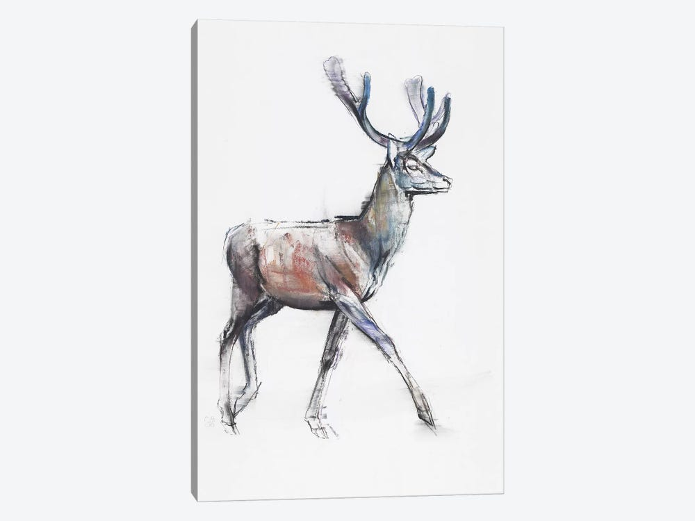 Velvet by Mark Adlington 1-piece Canvas Print
