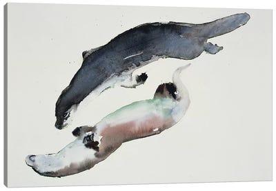 Yin Yang Canvas Art Print
