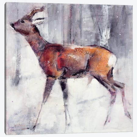 Buck In The Snow Canvas Print #MAD3} by Mark Adlington Canvas Art Print