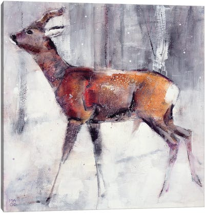 Buck In The Snow Canvas Art Print