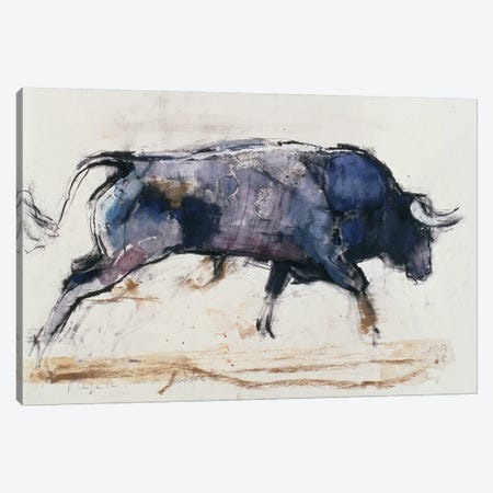 Charging Bull Canvas Print #MAD4} by Mark Adlington Canvas Artwork