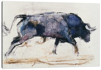 Charging Bull, 1998 Canvas Art Print