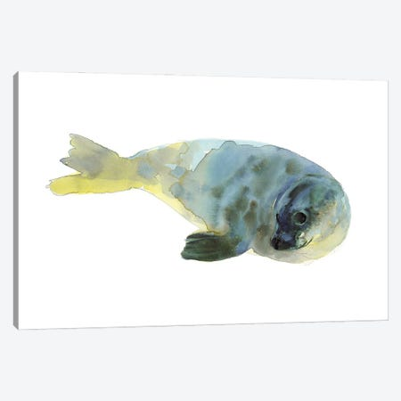 Aqua Green Canvas Print #MAD50} by Mark Adlington Canvas Artwork