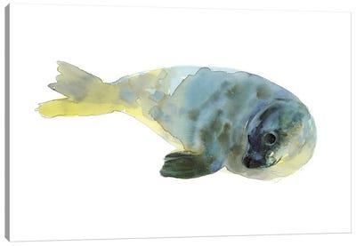 Aqua Green Canvas Art Print
