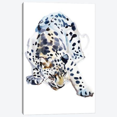 Arabian Leopard II, 2008 Canvas Print #MAD53} by Mark Adlington Canvas Art