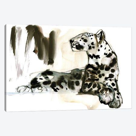 Arabian Leopard III, 2008 Canvas Print #MAD54} by Mark Adlington Canvas Art Print