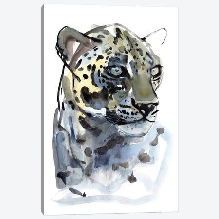Arabian Leopard V, 2008 Canvas Print #MAD56} by Mark Adlington Canvas Print
