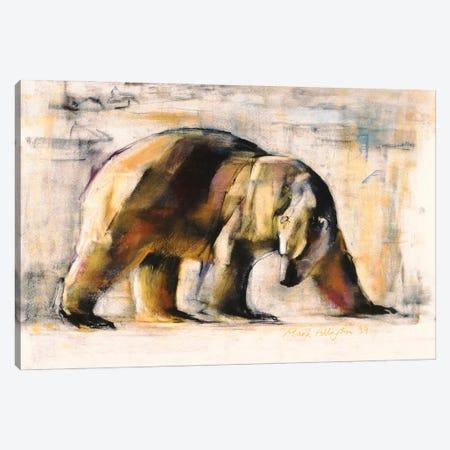 Arctic, 1999 Canvas Print #MAD59} by Mark Adlington Canvas Wall Art
