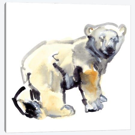 Cub (Polar Bear), 2015 Canvas Print #MAD67} by Mark Adlington Canvas Wall Art