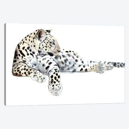 Long (Arabian Leopard), 2015 Canvas Print #MAD80} by Mark Adlington Art Print