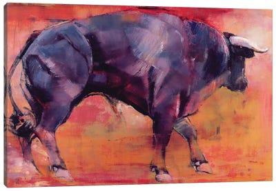 Parado, 1999 Canvas Art Print