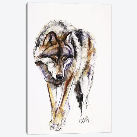 European Wolf Canvas Print #MAD8} by Mark Adlington Canvas Art Print