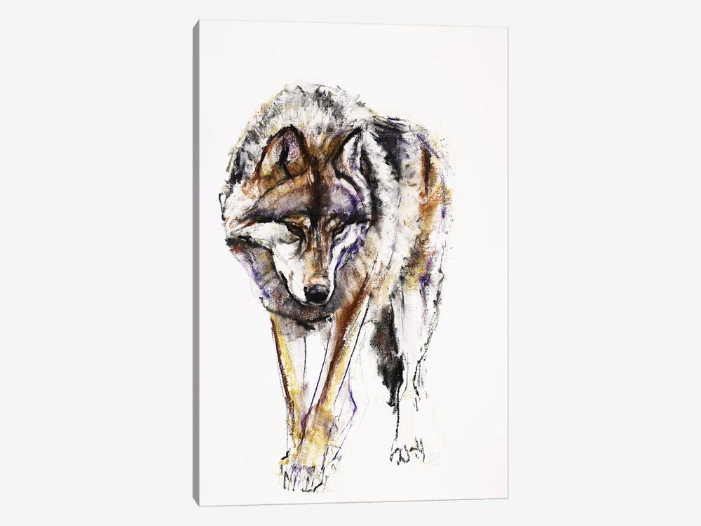European Wolf by Mark Adlington 1-piece Canvas Art Print