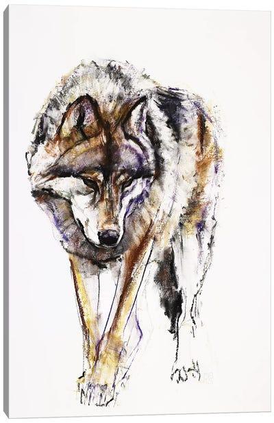 European Wolf Canvas Art Print