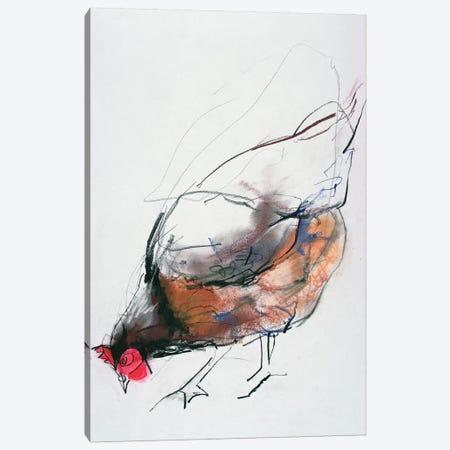 Feeding Hen, Trasierra, 1998 Canvas Print #MAD9} by Mark Adlington Art Print
