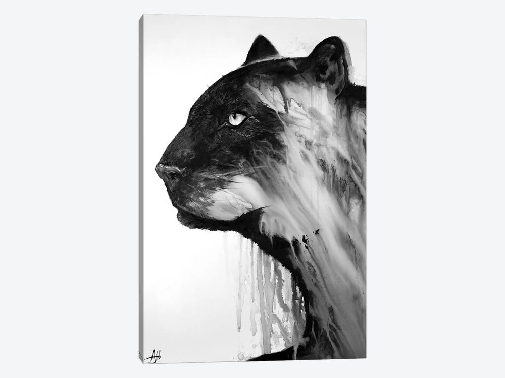 Orpheus in Black & White by Marc Allante 1-piece Canvas Wall Art