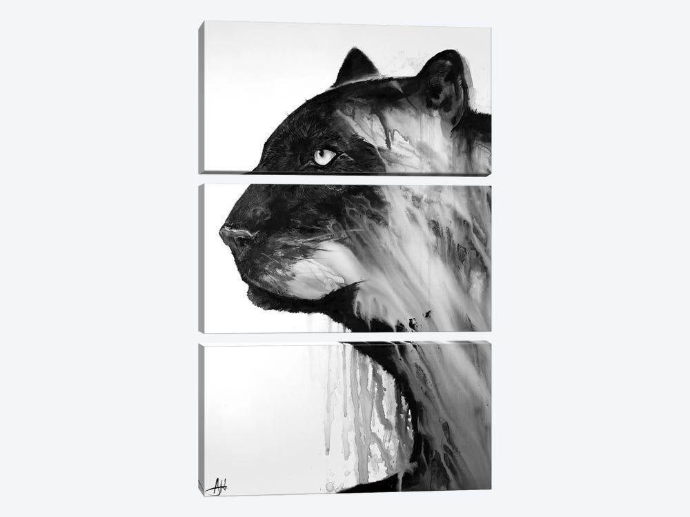 Orpheus in Black & White by Marc Allante 3-piece Canvas Artwork