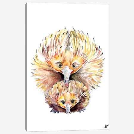Enigmatic Echidnas Canvas Print #MAE133} by Marc Allante Art Print
