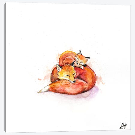 Foucault's Foxes Canvas Print #MAE134} by Marc Allante Canvas Wall Art