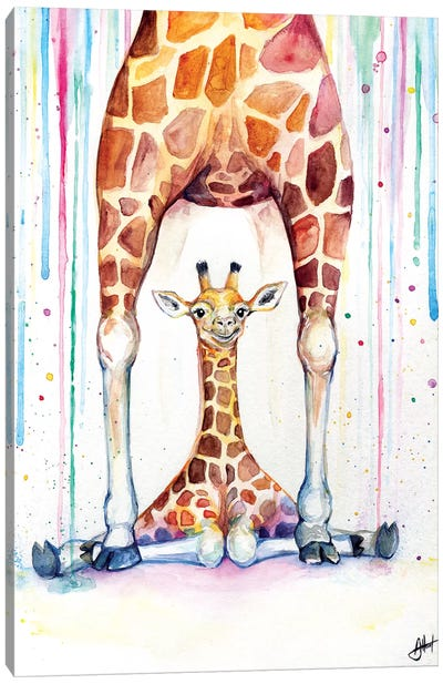 Gorgeous Giraffes In Rain Canvas Art Print