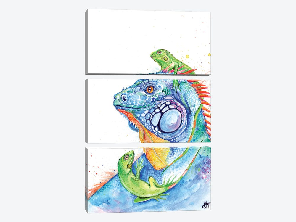 Here be Dragons by Marc Allante 3-piece Canvas Artwork