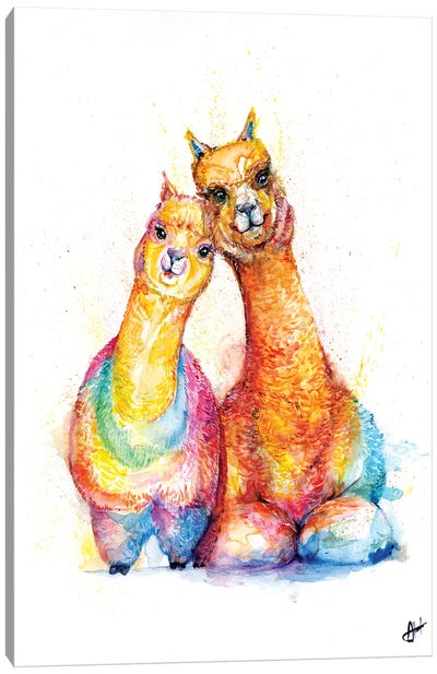 Packa' Alpaca Canvas Art Print