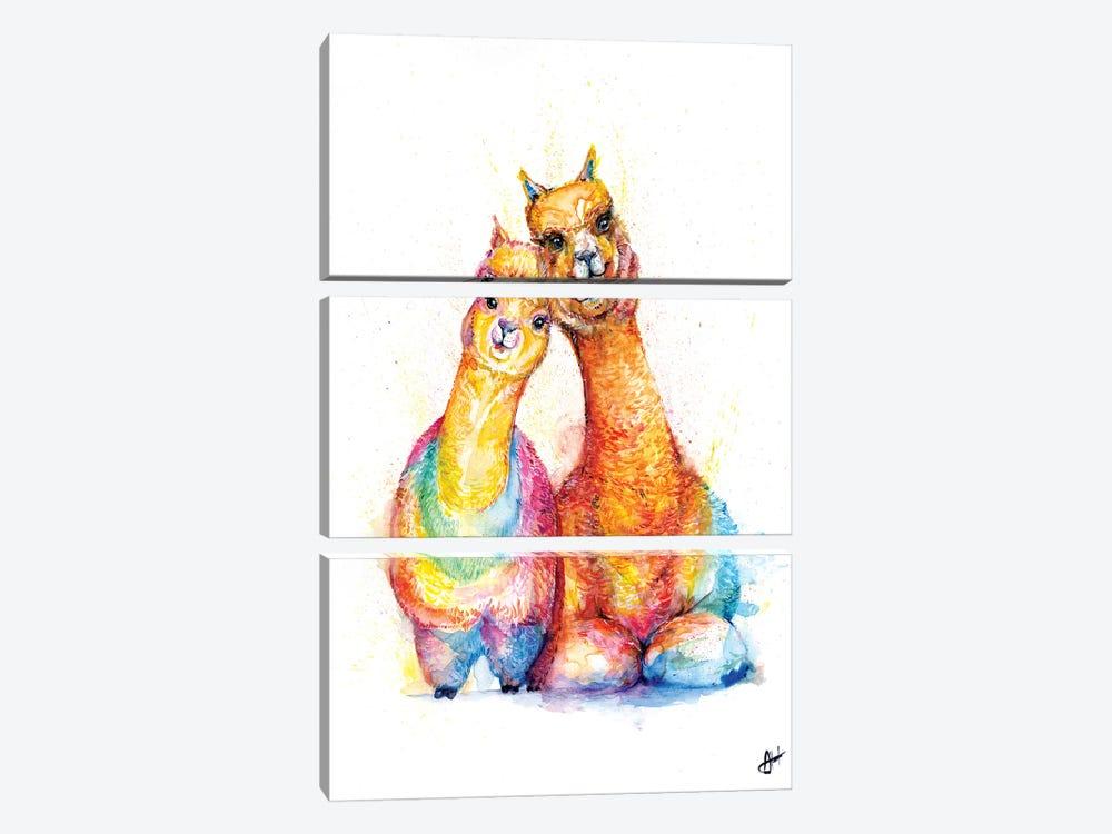 Packa' Alpaca by Marc Allante 3-piece Canvas Print