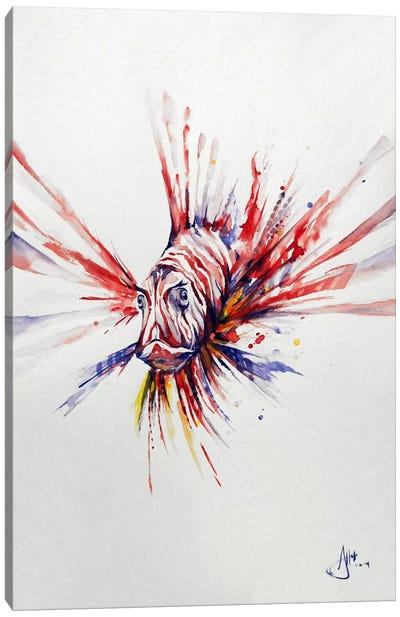 Pterois Canvas Art Print