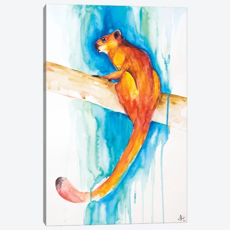 Giant Red Flying Squirrel Canvas Print #MAE79} by Marc Allante Canvas Art Print