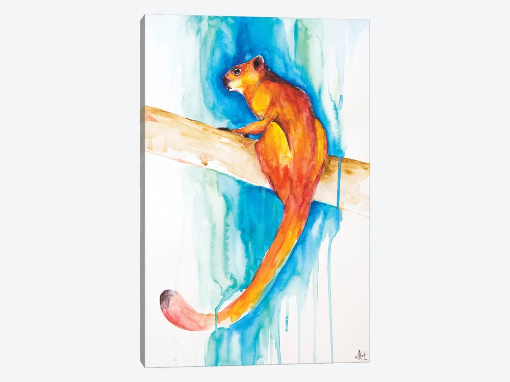 Giant Red Flying Squirrel by Marc Allante 1-piece Art Print