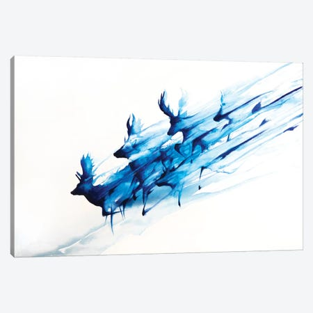 Caligo Canvas Print #MAE90} by Marc Allante Art Print