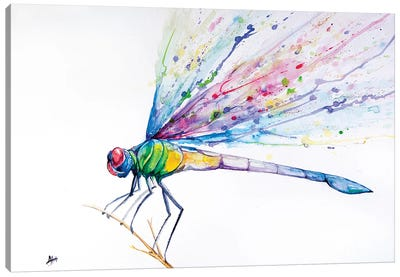 Dragonfly Canvas Art Print