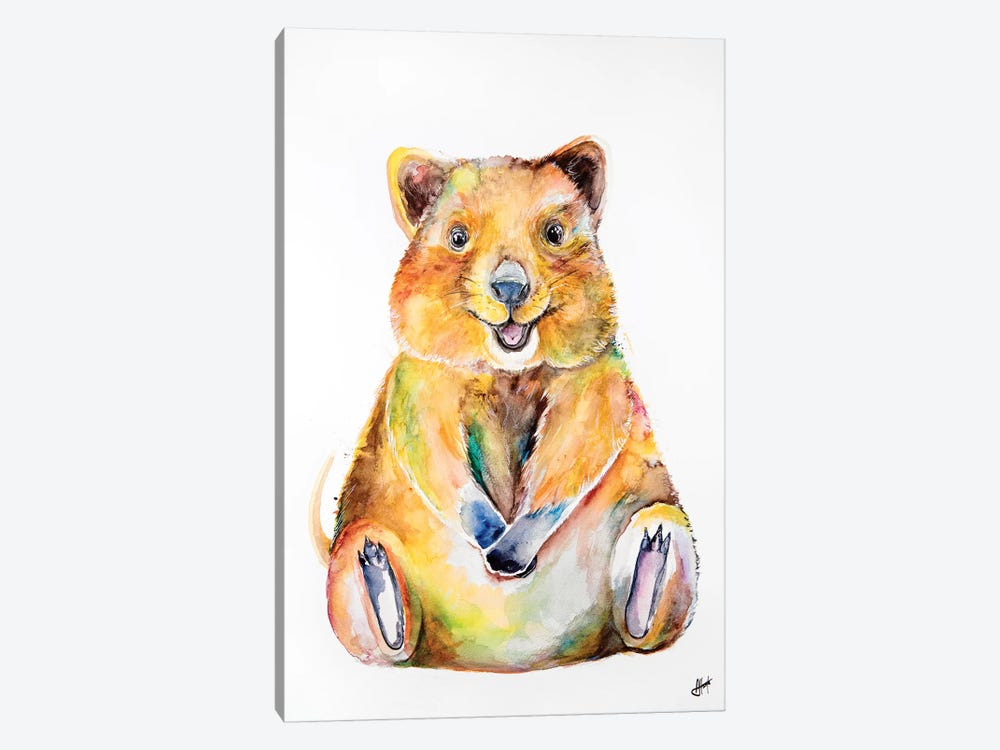 Quokka by Marc Allante 1-piece Canvas Artwork