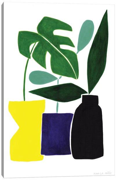 Abstract Plants II Canvas Art Print