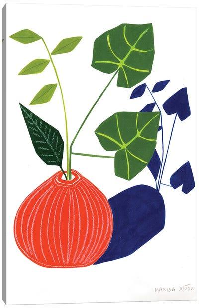 Abstract Plants XIV Canvas Art Print