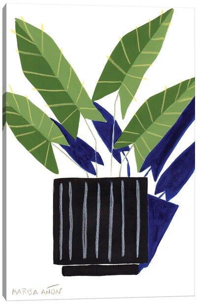 Abstract Plants XVII Canvas Art Print