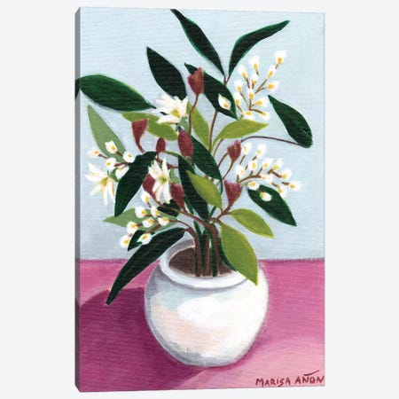 Flowers from Montserrat III Canvas Print #MAF22} by Marisa Añon Frau Art Print